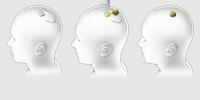 H Neuralink τοποθετεί εμφυτεύματα σε εγκέφαλους ζώων