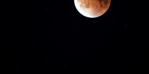 Ενα βλαστάρι μεγαλώνει στη Σελήνη