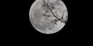 Η NASA βρήκε νερό στη Σελήνη
