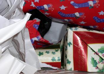 Οι σημαντικότερες χριστουγεννιάτικες προσφορές