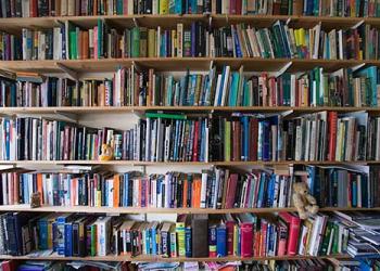 Βιβλία, Google και 'fair use'