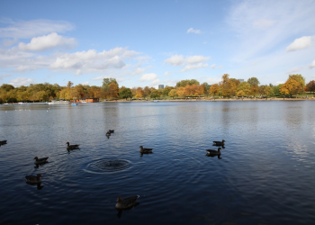 Bόλτα στο Hyde Park με την Canon EOS 7D