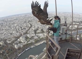 Πτήση πάνω από το Παρίσι με την οπτική ενός αετού