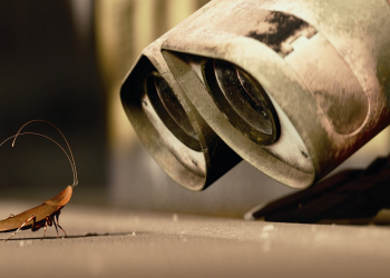 Από τους μονόκερους στις κατσαρίδες